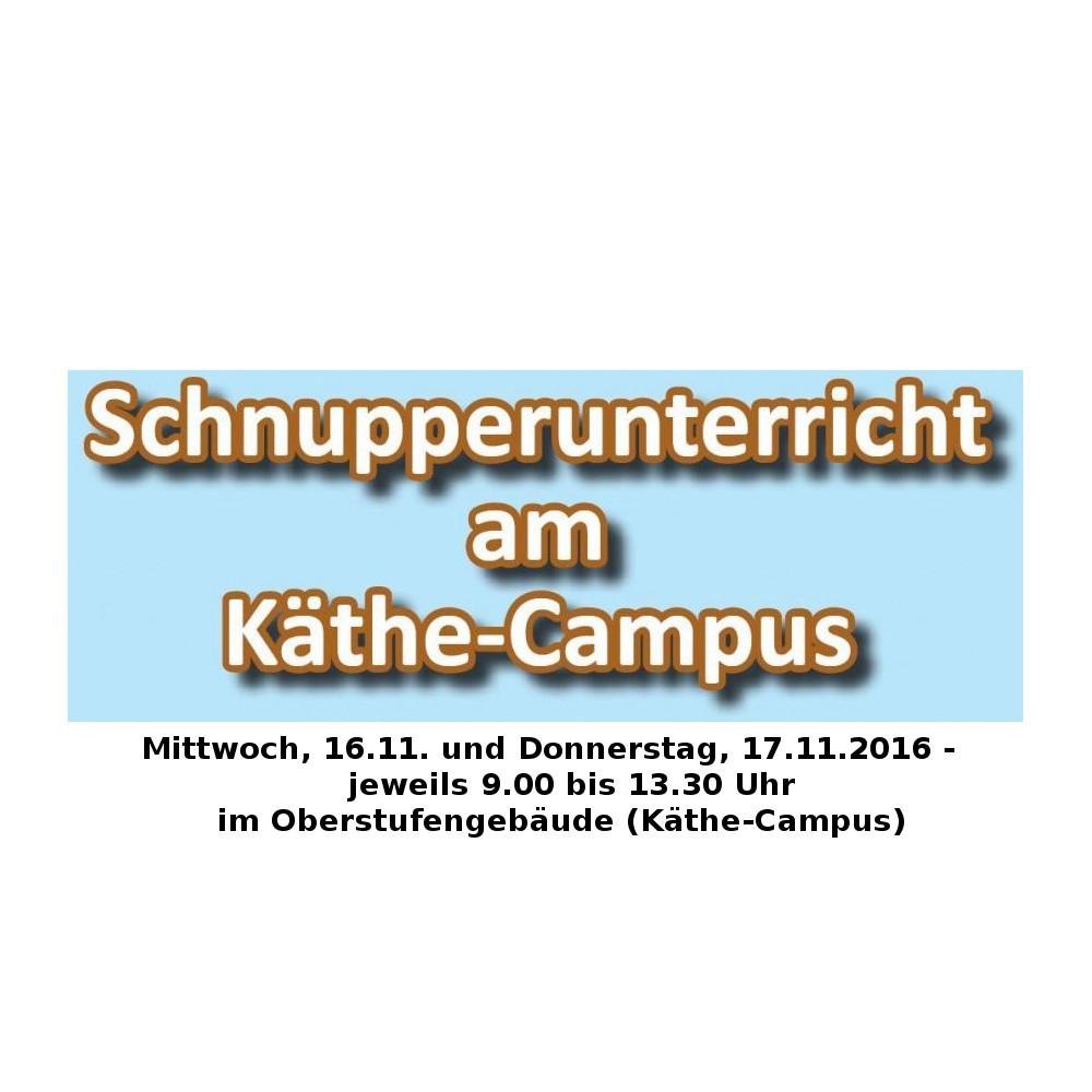 Tag der offenen Tür mit Schnupperunterricht für potentielle Oberstufenschülerinnen und -schüler